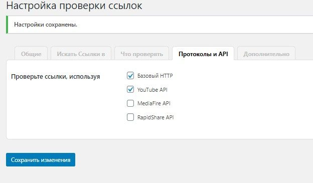 Окно Протоколы и API плагина Broken Link Checker